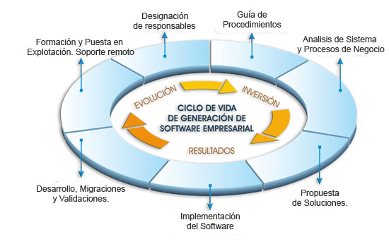 implantacion-de-software-empresarial